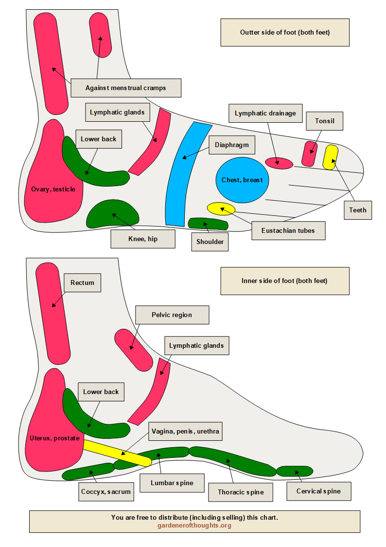 Sidesg see the chart for sides of both feet pooptronica